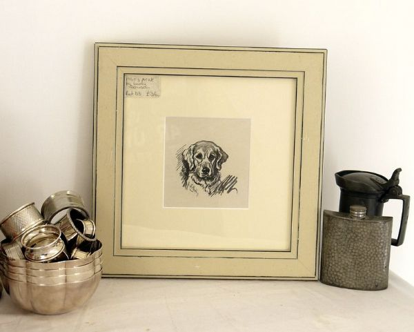 Retriever - head - Ret D3 -  1940's print by Lucy Dawson